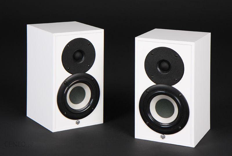 loa pylon audio pearl sat 2